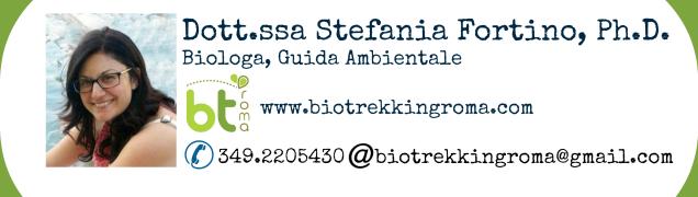 Stefania Fortino Biologa